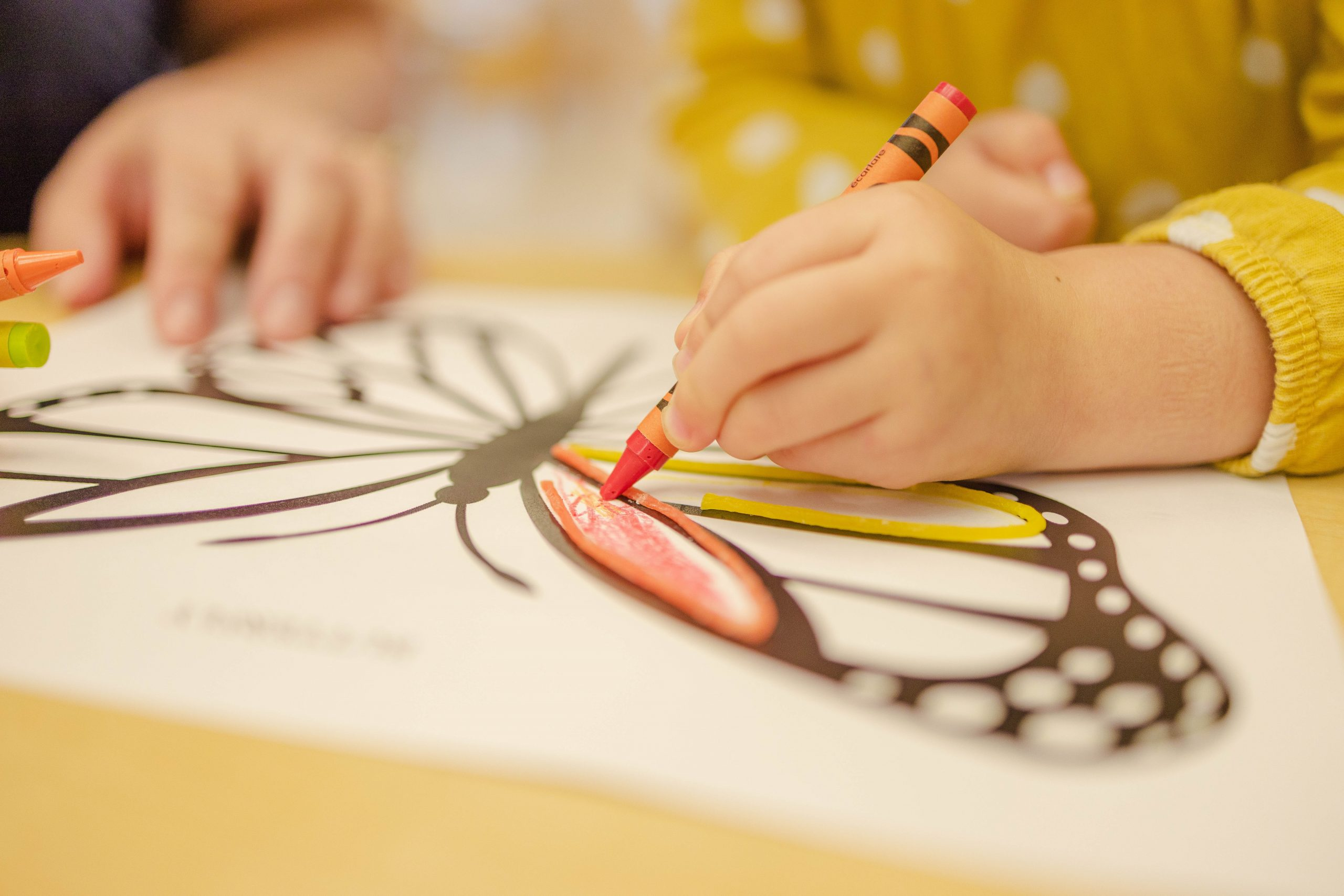 Our 5 Favorite Coloring Books
